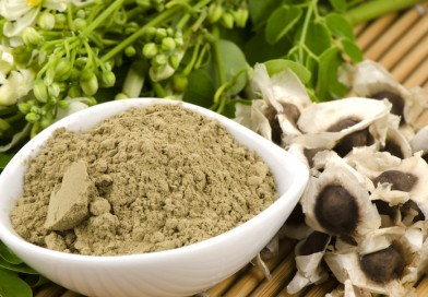 Moringa Extract – Does it help with weight loss?